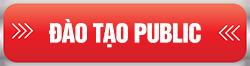 dao-tao-public