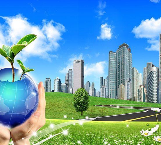 Khóa học Nghiệp vụ Tư vấn và Quản lý môi trường Doanh nghiệp