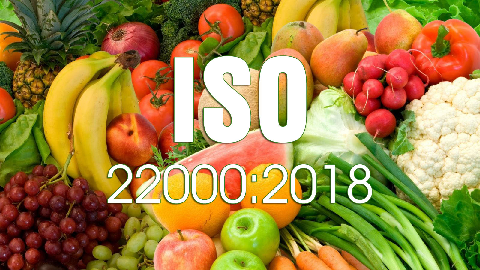 THIẾT LẬP THÔNG TIN VĂN BẢN THEO YÊU CẦU  ISO 22000:2018 (Cấp 2)