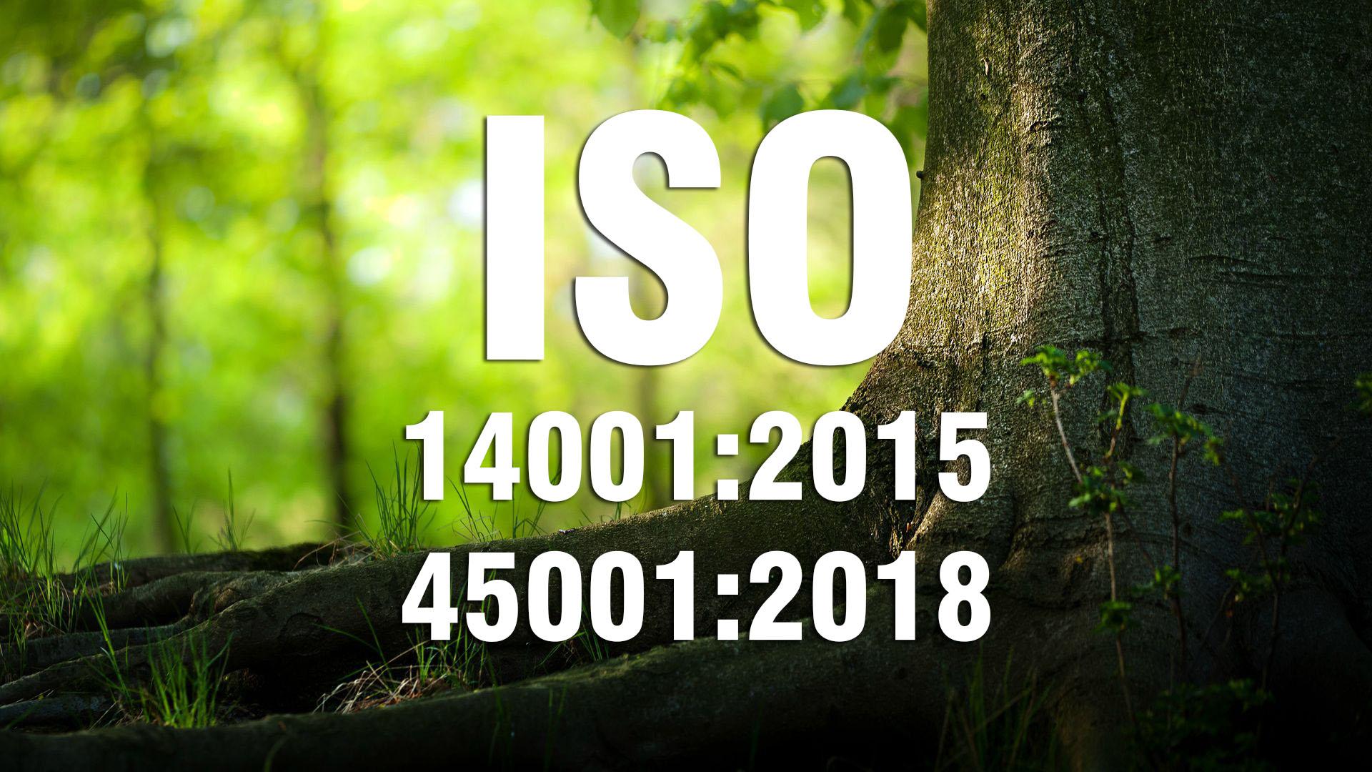 ĐÁNH GIÁ VIÊN NỘI BỘ TIÊU CHUẨN  ISO 14001:2015 & ISO 45001:2018 (Cấp 3)
